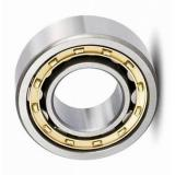 High Temperature Double Row Self-Aligning Ball Bearing Manufacturer