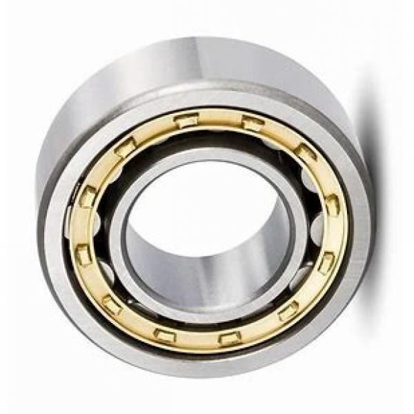 High Temperature Double Row Self-Aligning Ball Bearing Manufacturer #1 image